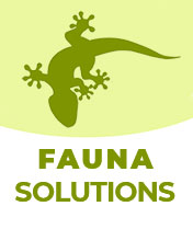 fauna solutions logo final